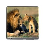 Kissing Mom  Lions Memory Card Reader with Storage (Square)