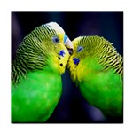 Kiss And Love Lovebird Tile Coaster