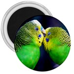 Kiss And Love Lovebird 3  Magnet