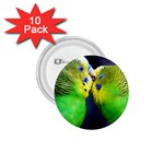 Kiss And Love Lovebird 1.75  Button (10 pack)
