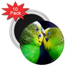 Kiss And Love Lovebird 2.25  Magnet (10 pack)