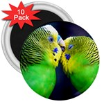 Kiss And Love Lovebird 3  Magnet (10 pack)