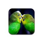 Kiss And Love Lovebird Rubber Square Coaster (4 pack)