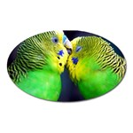Kiss And Love Lovebird Magnet (Oval)