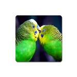 Kiss And Love Lovebird Magnet (Square)