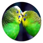 Kiss And Love Lovebird Magnet 5  (Round)