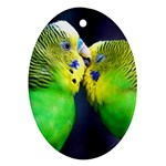 Kiss And Love Lovebird Oval Ornament (Two Sides)