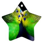Kiss And Love Lovebird Star Ornament (Two Sides)
