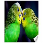 Kiss And Love Lovebird Canvas 16  x 20