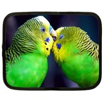 Kiss And Love Lovebird Netbook Case (Large)