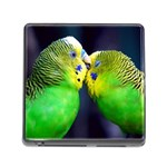 Kiss And Love Lovebird Memory Card Reader with Storage (Square)