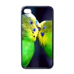 Kiss And Love Lovebird Apple iPhone 4 Case (Black)