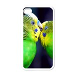 Kiss And Love Lovebird Apple iPhone 4 Case (White)