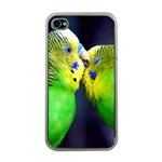 Kiss And Love Lovebird Apple iPhone 4 Case (Clear)