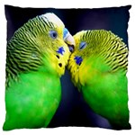 Kiss And Love Lovebird Large Cushion Case (Two Sides)