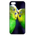 Kiss And Love Lovebird Apple iPhone 5 Seamless Case (Black)