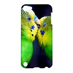 Kiss And Love Lovebird Apple iPod Touch 5 Hardshell Case