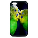 Kiss And Love Lovebird Apple iPhone 5 Hardshell Case (PC+Silicone)