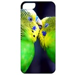 Kiss And Love Lovebird Apple iPhone 5 Classic Hardshell Case