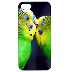 Kiss And Love Lovebird Apple iPhone 5 Hardshell Case with Stand