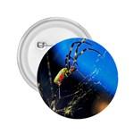 Joro Spider 2.25  Button