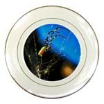 Joro Spider Porcelain Plate
