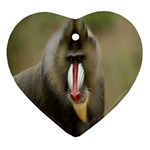Mandrill Monkey Heart Ornament (Two Sides)