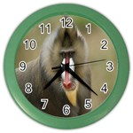 Mandrill Monkey Color Wall Clock