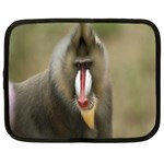 Mandrill Monkey Netbook Case (XL)