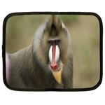 Mandrill Monkey Netbook Case (XXL)