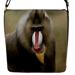 Mandrill Monkey Flap closure messenger bag (Small)