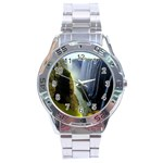 Victoria Falls Zambia Stainless Steel Analogue Men's Watch