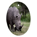 Wild Animal Rhino Oval Ornament (Two Sides)