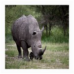 Wild Animal Rhino Glasses Cloth (Medium, Two Sides)