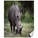 Wild Animal Rhino Canvas 11  x 14
