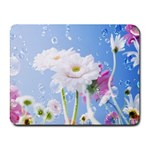 White Gerbera Flower Refresh From Rain Small Mousepad