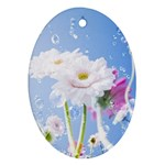 White Gerbera Flower Refresh From Rain Oval Ornament (Two Sides)