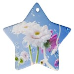 White Gerbera Flower Refresh From Rain Star Ornament (Two Sides)