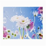 White Gerbera Flower Refresh From Rain Glasses Cloth (Small, Two Sides)
