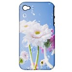 White Gerbera Flower Refresh From Rain Apple iPhone 4/4S Hardshell Case (PC+Silicone)