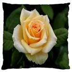 Yellow Rose Large Cushion Case (One Side)