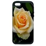 Yellow Rose Apple iPhone 5 Hardshell Case (PC+Silicone)