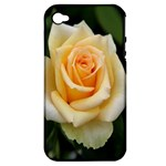 Yellow Rose Apple iPhone 4/4S Hardshell Case (PC+Silicone)