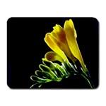 Yellow Freesia Flower Small Mousepad