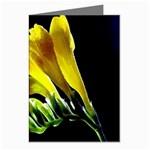Yellow Freesia Flower Greeting Card