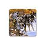 Wolf Family Love Animal Magnet (Square)
