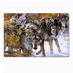 Wolf Family Love Animal Postcard 5  x 7