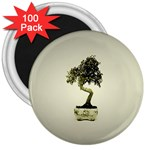 Beauty Of Peaceful Bonsai Tree 3  Magnet (100 pack)
