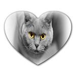 Animal Cat Golden Eyes Mousepad (Heart)