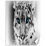 Animal Leopard In Snow Canvas 12  x 16